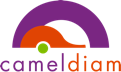 logo cameldiam